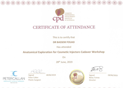Anatomoical Exploration Cosmatic Injectors -Cadaver Workshop-12